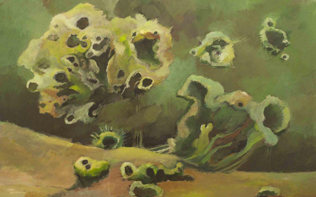 Jan Vluggen – Begroeiing op zoek naar niet giftige grond